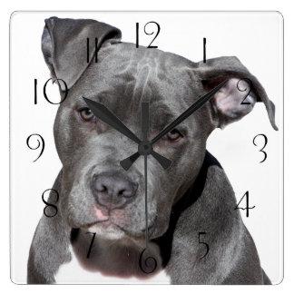 Horloge Carrée Pitbull Terrier américain