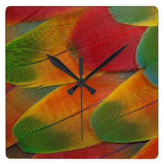 Horloge Carrée Plumes de perroquet d'ara de harlequin