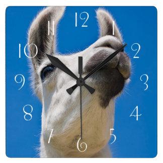 Horloge Carrée Portrait de lama