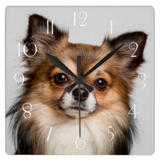 Horloge Carrée portrait renversant de chiwawa