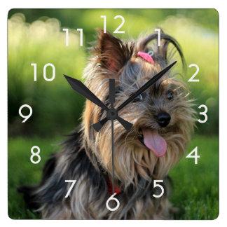 Horloge Carrée Terrier mignon/horloge photo de chiot/chien