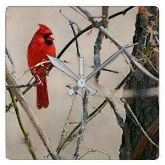 Horloge Carrée Un oiseau cardinal rouge sur une branche dans les