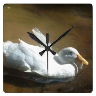 Horloge de canard de natation