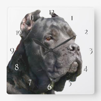 Horloge de chien de Corso de canne