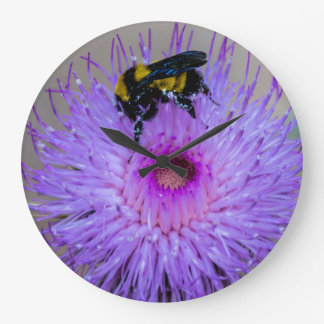 Horloge de pollination de fleurs sauvages