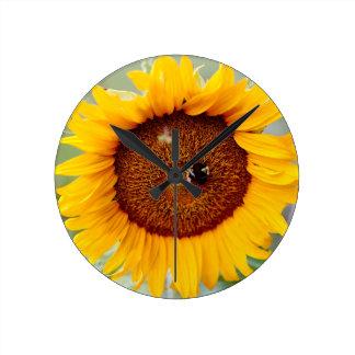 Horloge de tournesol