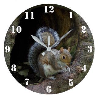 Horloge d'écureuil