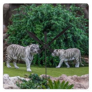 Horloge murale carrée de tigres blancs