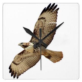 Horloge murale d'animal de faune d'oiseau de