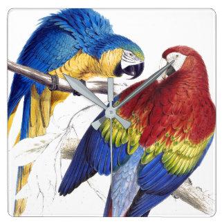 Horloge murale d'animaux de faune d'oiseaux de