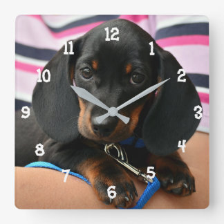 Horloge murale de chiot de teckel
