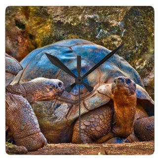 Horloge murale de tortues de Galapagos de reptile