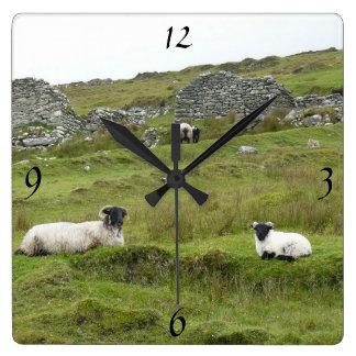 Horloge murale irlandaise de moutons