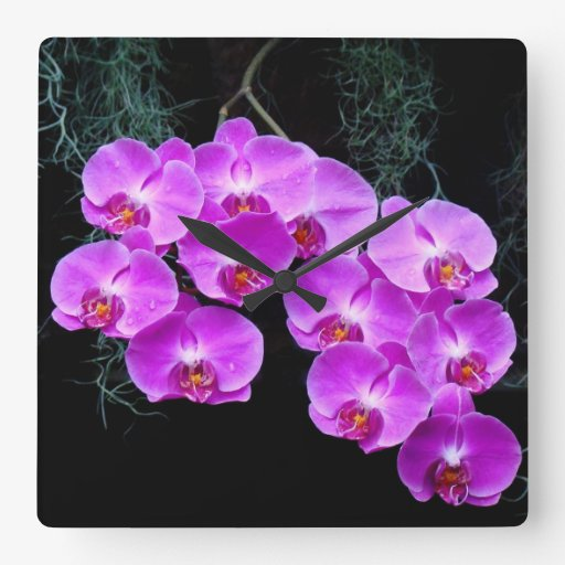 Horloge murale Rosée-Embrassée d'orchidées