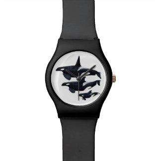 Horloge orque montres cadran