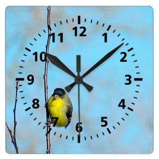 Horloge - pinson jaune