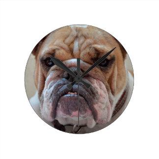 Horloge Ronde Animal de chien de Pitbull