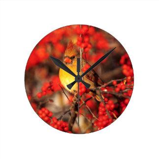 Horloge Ronde Baies femelles et rouges cardinales, IL