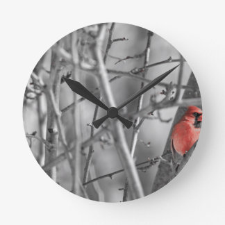 Horloge Ronde Cardinal dans un arbre