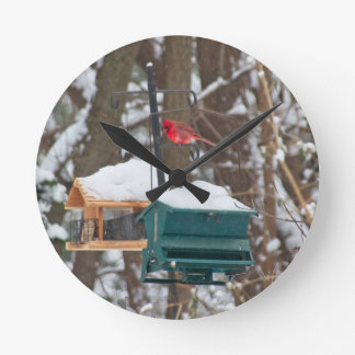 Horloge Ronde Cardinal sur Birdfeeder
