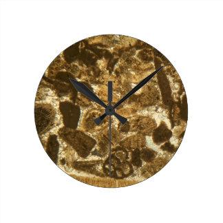 Horloge Ronde Chaux miocène sous le microscope