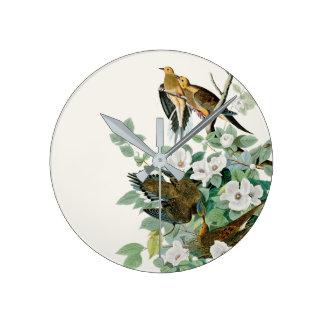 Horloge Ronde Colombe de tortue de la Caroline, oiseaux de