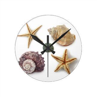 Horloge Ronde étoiles de mer chics de coquillage de plage