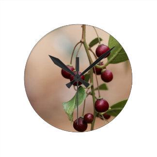 Horloge Ronde Fruits d'un nerprun brillant de feuille