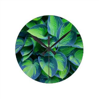 Horloge Ronde Hosta
