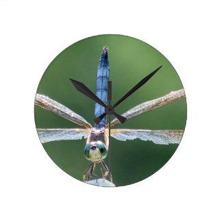 Horloge Ronde Libellule bleue