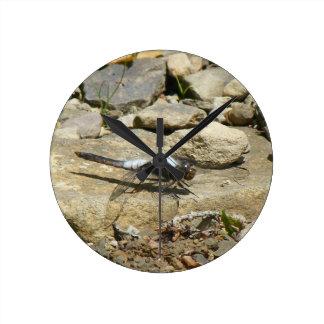 Horloge Ronde Libellule sur l'horloge murale en pierre