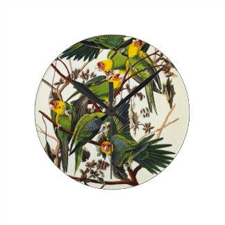 Horloge Ronde Perroquet de la Caroline - John James Audubon