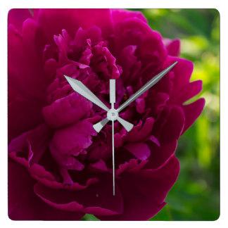 Horloges roses de pivoine