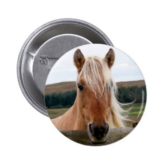 Horsie Badge