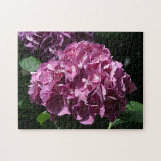 Hortensia, puzzle de photo