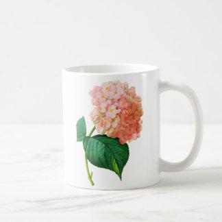 Hortensia rose par Pierre Joseph Redoute Mug