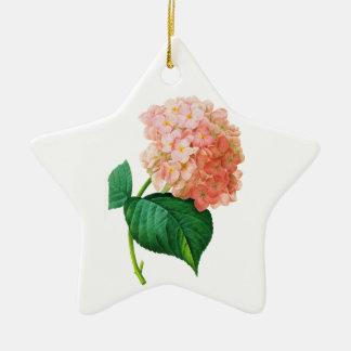 Hortensia rose par Pierre Joseph Redoute Ornement Étoile En Céramique