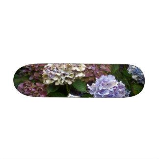 Hortensias pourpres de bleu de lavande skateboard old school  21,6 cm