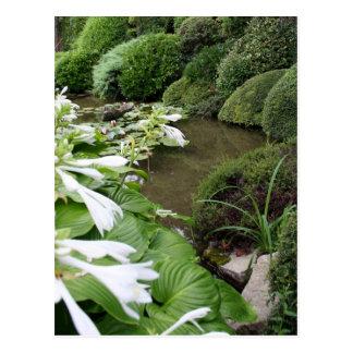 Hosta dans un jardin de zen carte postale