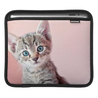 Housse iPad Chaton mignon avec les yeux bleus