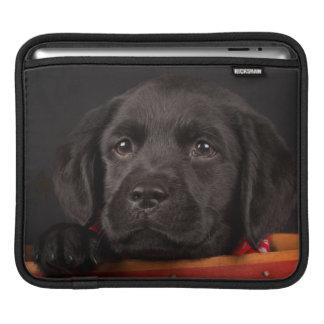 Housse iPad Chiot noir de labrador retriever dans un panier