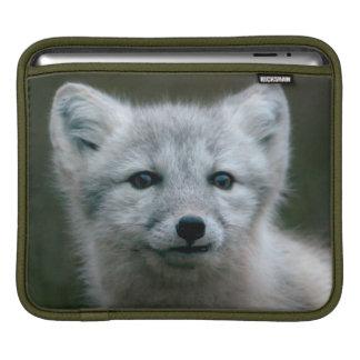 Housse iPad Kit de Fox arctique des images | de Getty