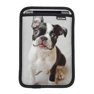 Housse iPad Mini Boston Terrier