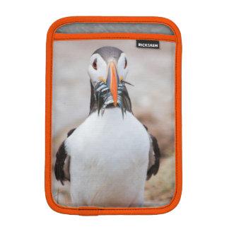Housse iPad Mini Cas de macareux