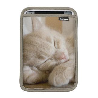 Housse iPad Mini Chaton de sommeil