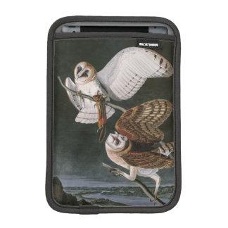 Housse iPad Mini Hiboux de grange, les oiseaux de l'Amérique John