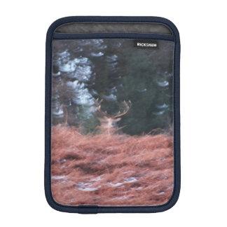 Housse iPad Mini Mâle sur une colline