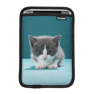 Housse iPad Mini Petit chaton