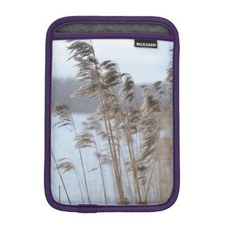 Housse iPad Mini Photo pittoresque paisible d'herbe de lac winter