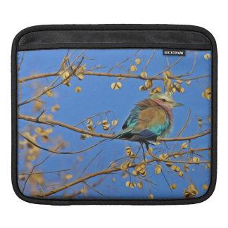 Housse iPad Petit oiseau coloré mignon sur la branche en ciel